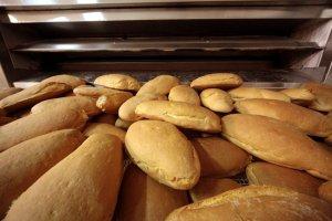 Pane comune da 1/2 Kg